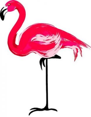 Flamant rose 4