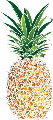 Ananas magnifique
