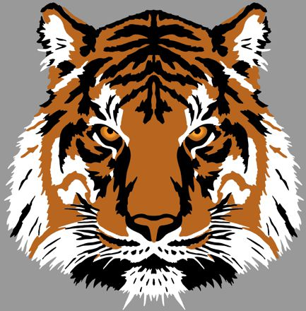 Anisp213 pochoir tete tigre 3 d en 3 pochoirs