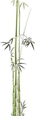 Bambous fins