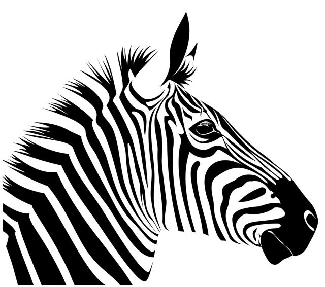 Pochoir t te de z bre en plastique r utilisable volont - Zebre a dessiner ...