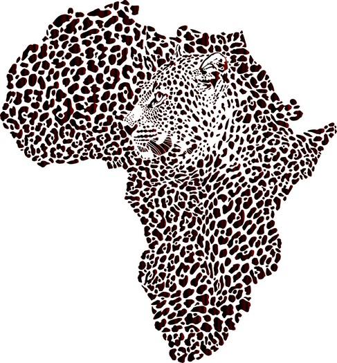 Afri4002 pochoir carte afrique leopard