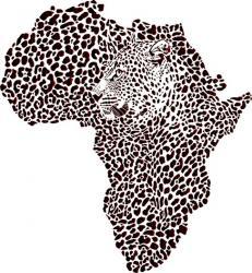 Afrique Leopard 4002