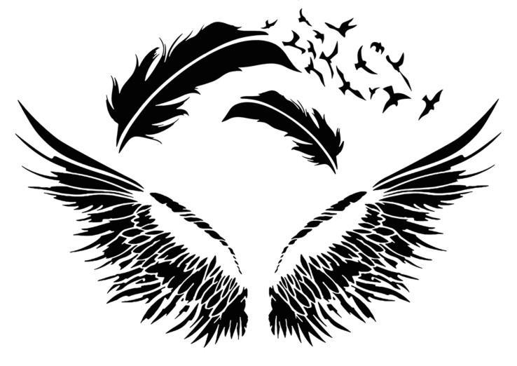 An14624 plumes oiseaux pochoir