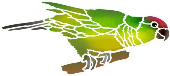 An47895 perruche perroquet oiseau en pochoir