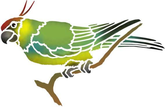 An48686 perruche 2 pochoir a peindre perroquet oiseau exotique