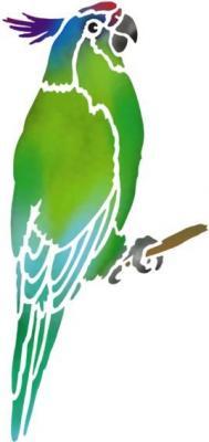 An56985 perruche 3 perroquet oiseau pochoir a peindre