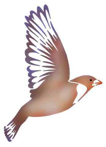 An57969 oiseau en vol 3pochoir a peindre