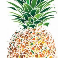 Ananas design pochoir mon artisane c3314