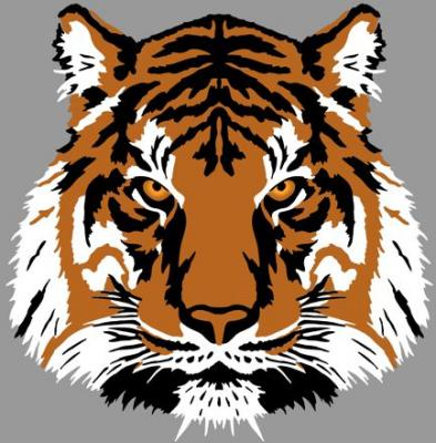 Tête de tigre 3D