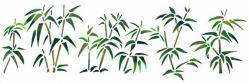 Frise de bambous