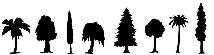 Fri548478 frise arbres2