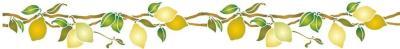Frise citrons 2