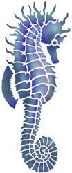 Hippocampe Mar91245