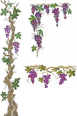 Kit Grande vigne