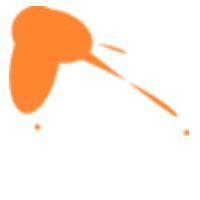 Peinture solide pochoir lefranc bourgeois mandarine