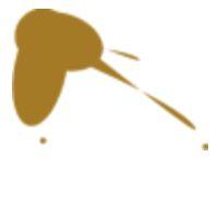 Peinture solide pochoir lefranc bourgeois ocre jaune