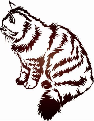 Pochoir chat magnifique an2 sticker chats