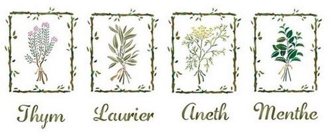 Pochoir frise de plantes aromatiques thym laurier aneth menthe