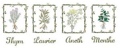 Frise  plantes aromatiques