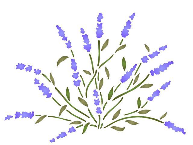 Pochoir plante lavande spf089