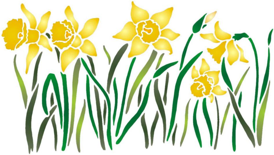 Spfr093 pochoir frise jonquilles bordure fleurs jaune narcisses a peindre